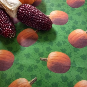 pumpkin patch fabric