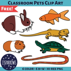 classroom pets clip art tpt thumbnail