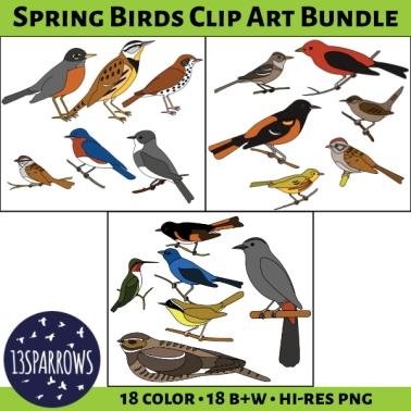 spring birds clip art bundle tpt preview