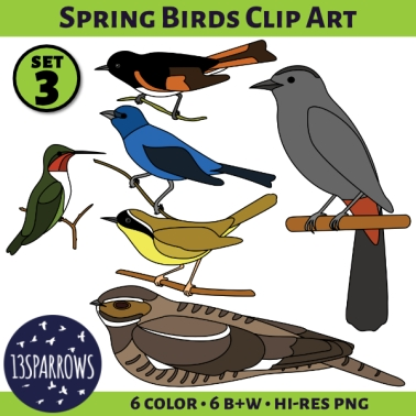 Spring Birds Clip Art, Set 3