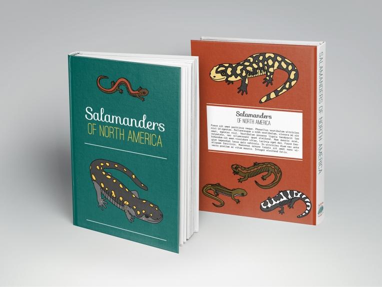 common salamanders