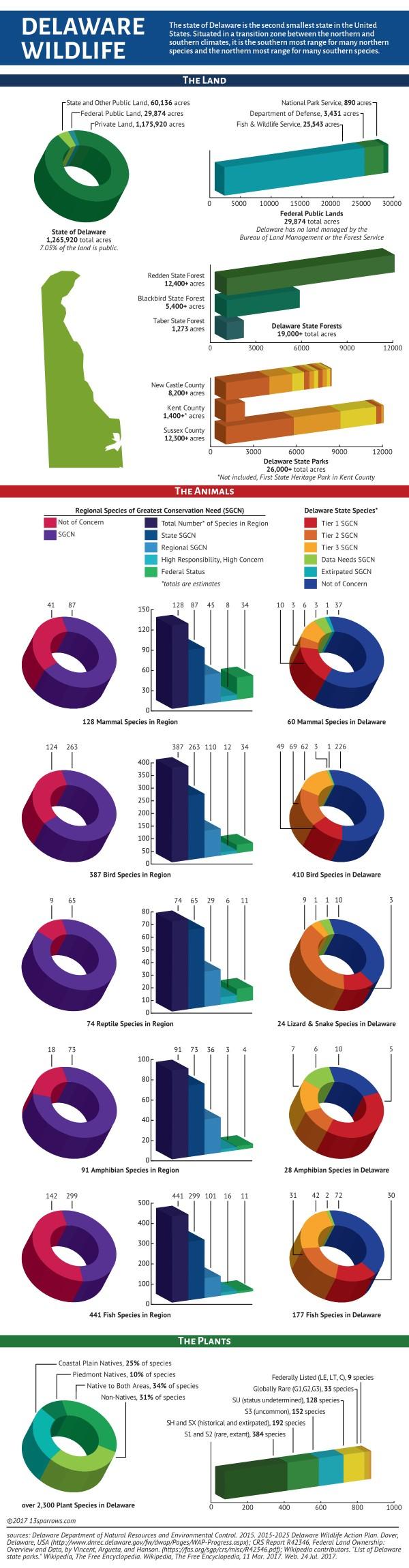 wild delaware infographic