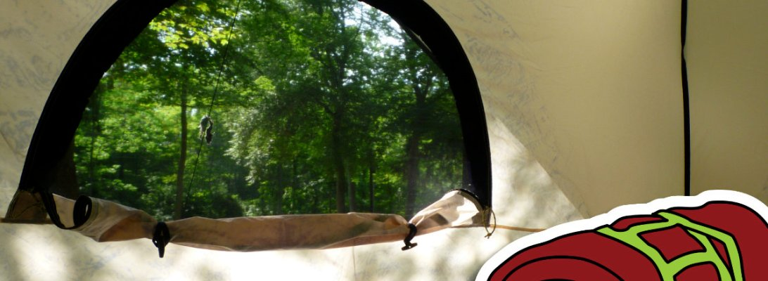 A photograph taken inside a tent full of sleeping bags looking out the arched screen window onto a dappled woodland.